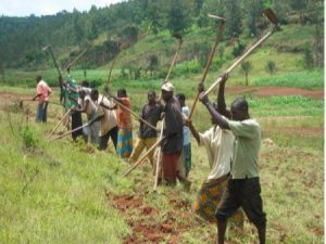 Mission de volontariat humanitaire au Rwanda