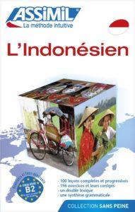 Mission de volontariat humanitaire en indonesie